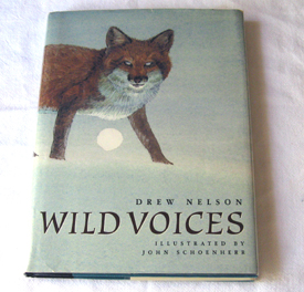 Image for Wild Voices