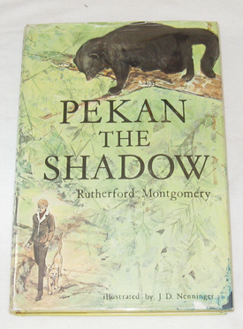 Image for Pekan The Shadow