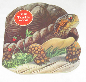 Image for The Turtle Book