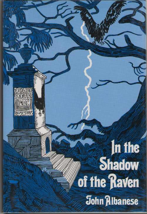 Image for In the Shadow of the Raven