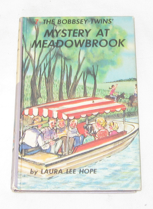 Image for The Bobbsey Twins Mystery At Meadowbrook