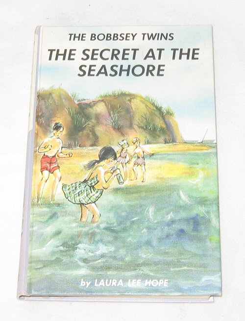 Image for The Bobbsey Twins: The Secret At The Seashore