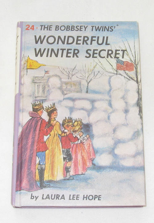 Image for The Bobbsey Twins Wonderful Winter Secret