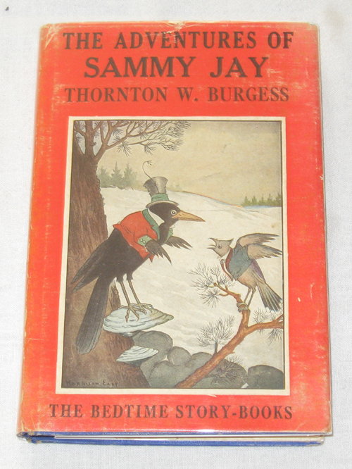 Image for The Adventures Of Sammy Jay