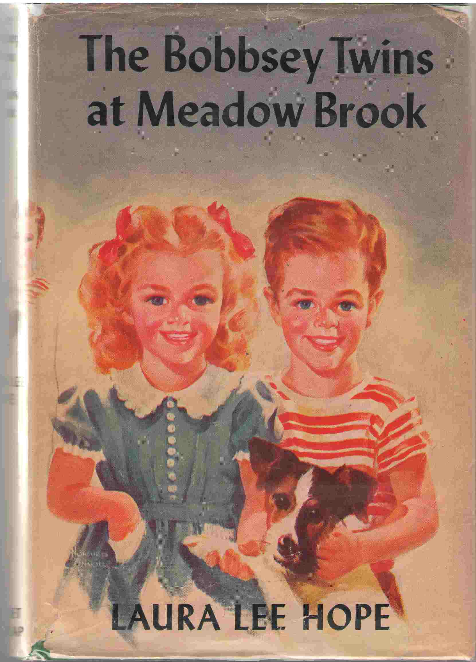 Image for The Bobbsey Twins At Meadow Brook