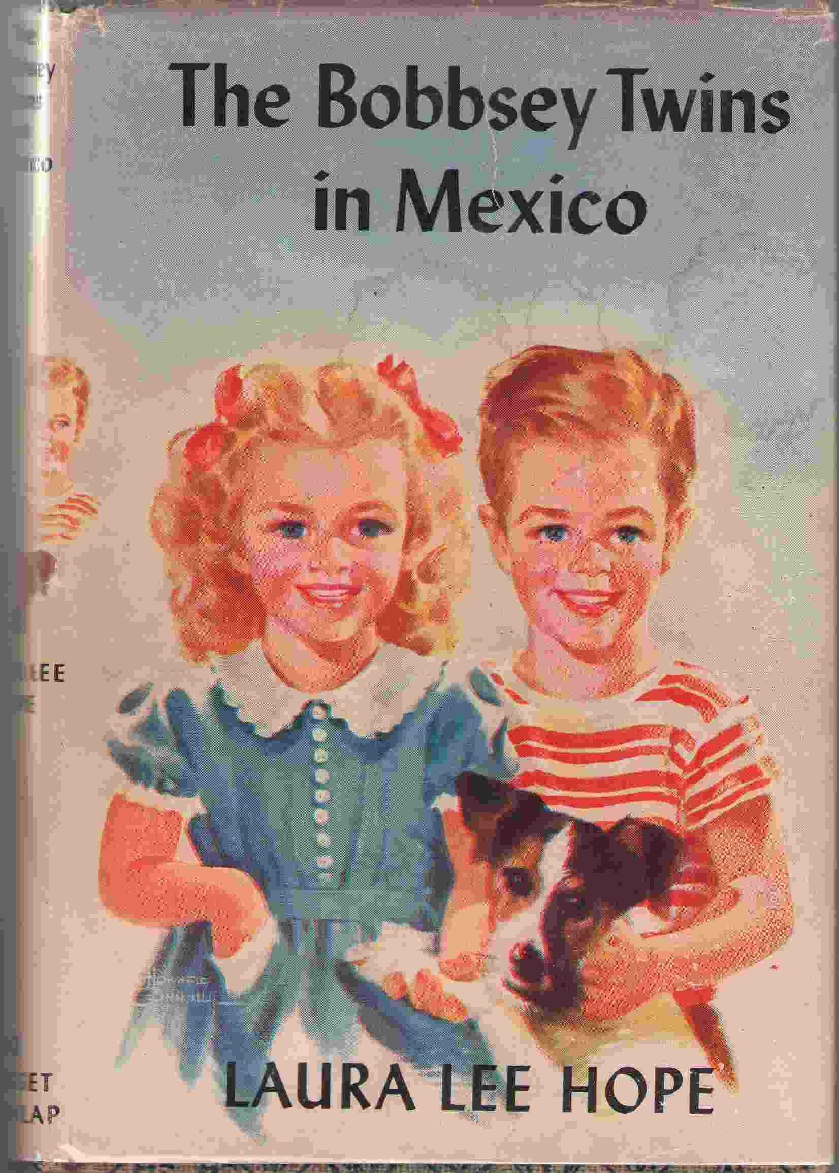 Image for The Bobbsey Twins In Mexico
