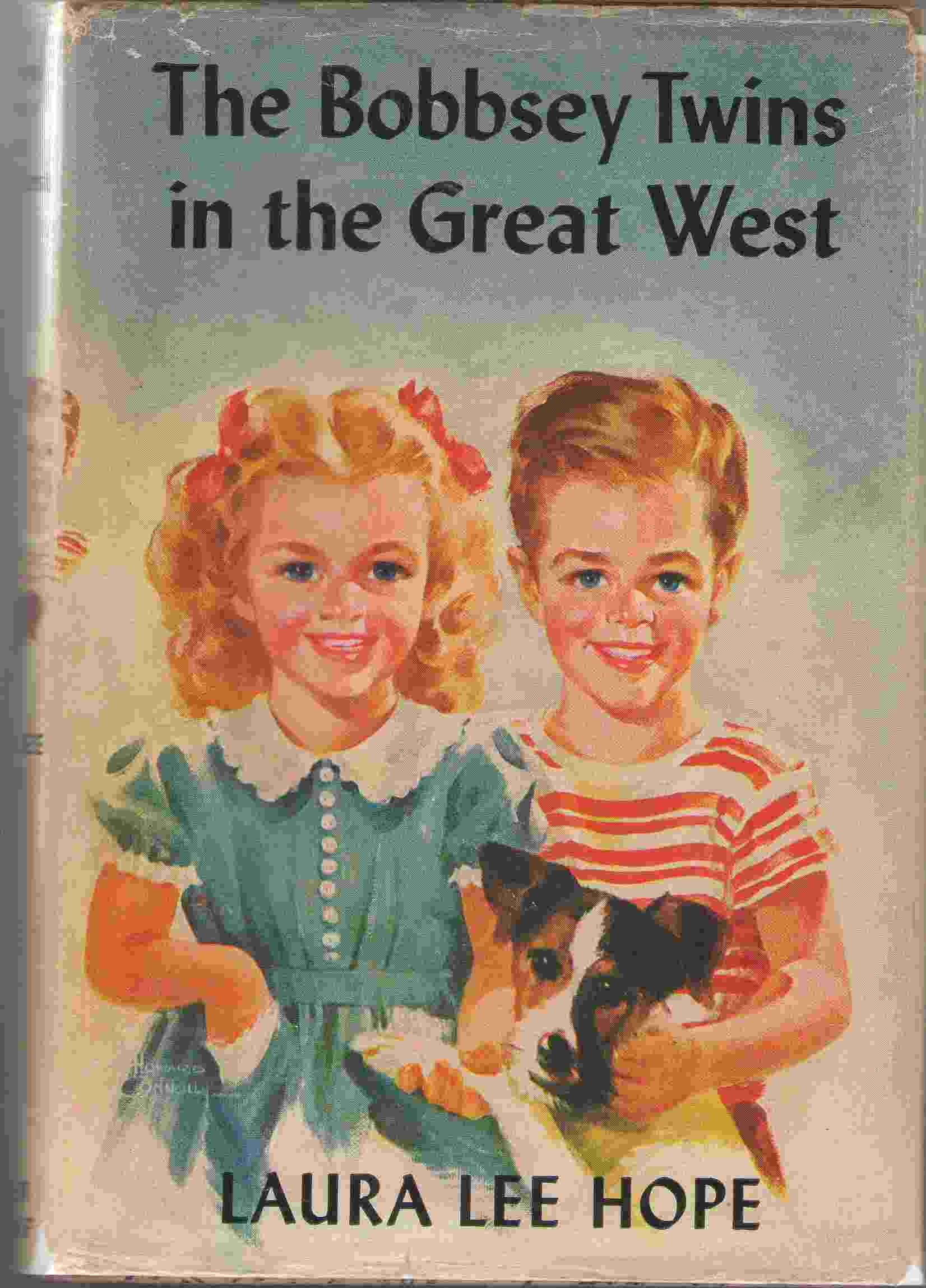 Image for The Bobbsey Twins In The Great West