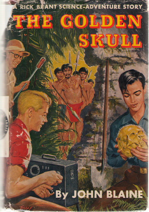 Image for The Golden Skull