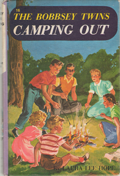 Image for The Bobbsey Twins Camping Out