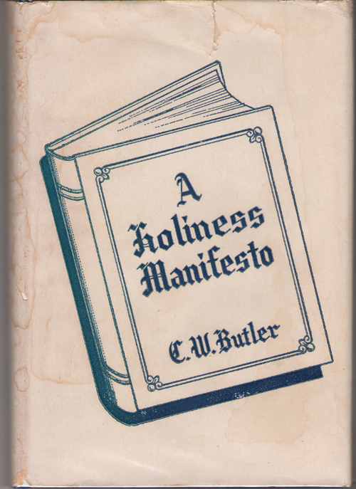 Image for A Holiness Manifesto
