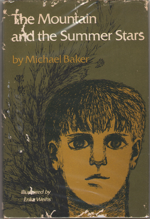 Image for The Mountain And The Summer Stars