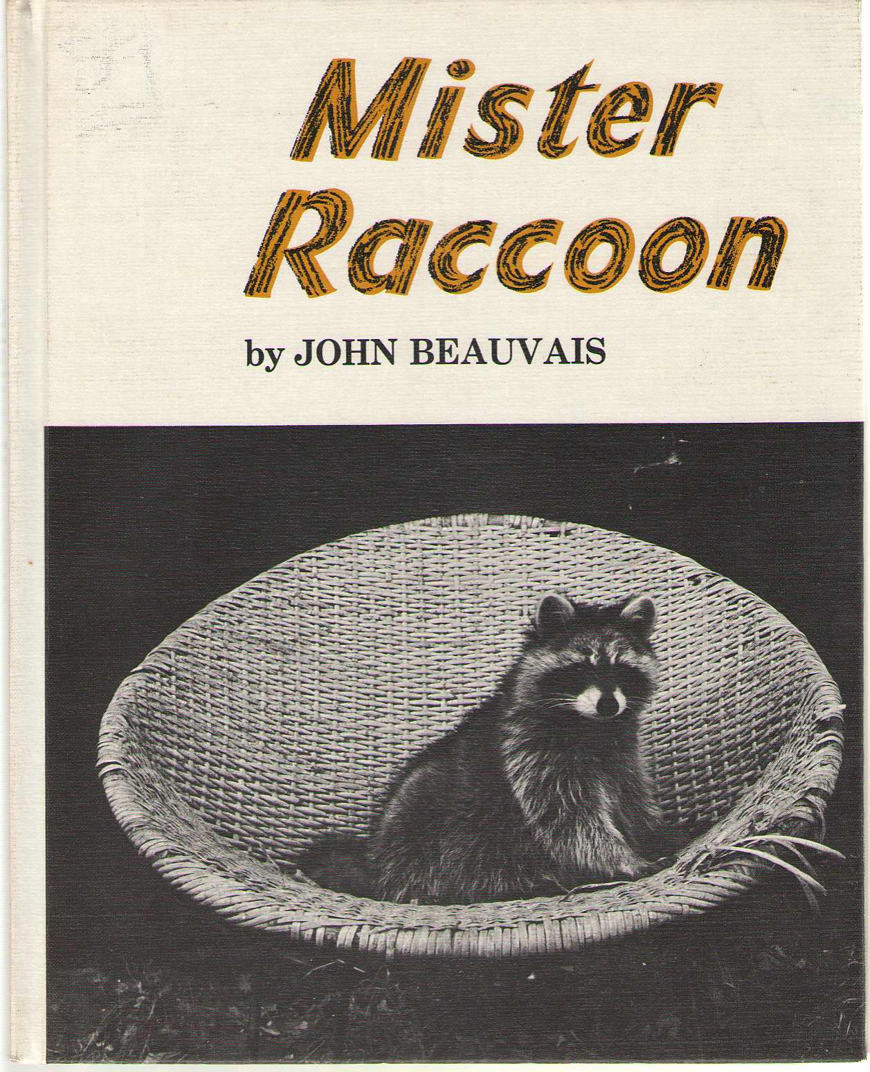 Image for Mister Raccoon