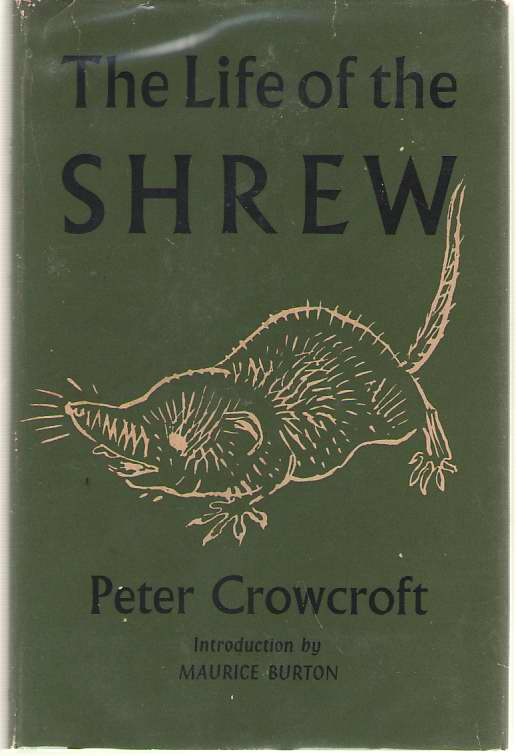Image for The Life of the Shrew
