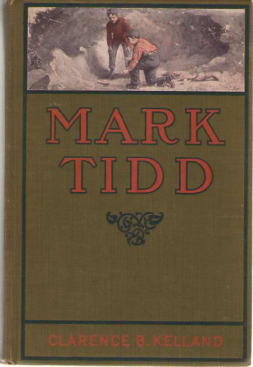 Image for Mark Tidd His Adventures and Strategies