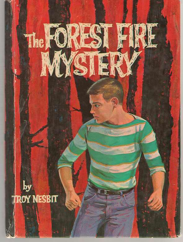 Image for The Forest Fire Mystery