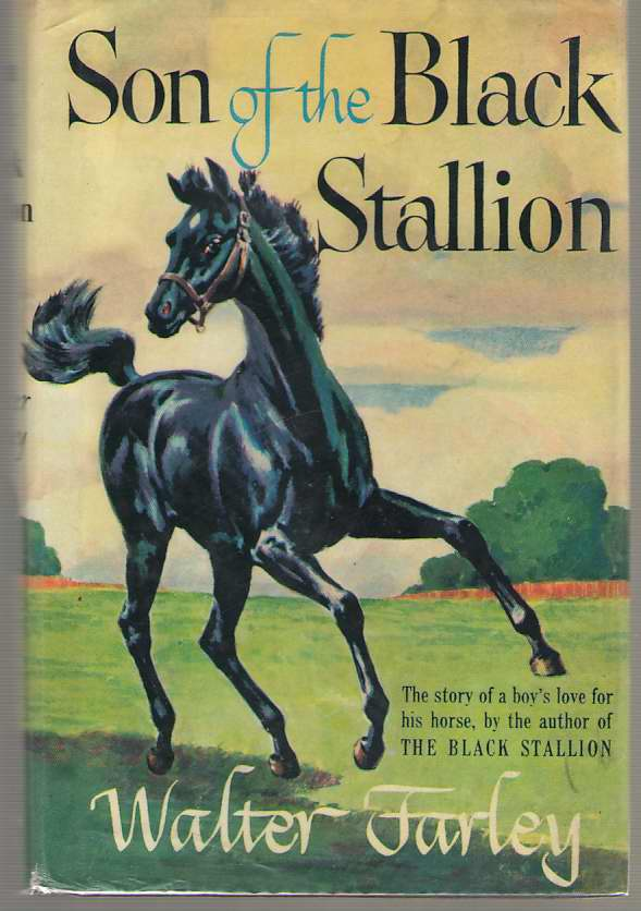 Image for Son of the Black Stallion