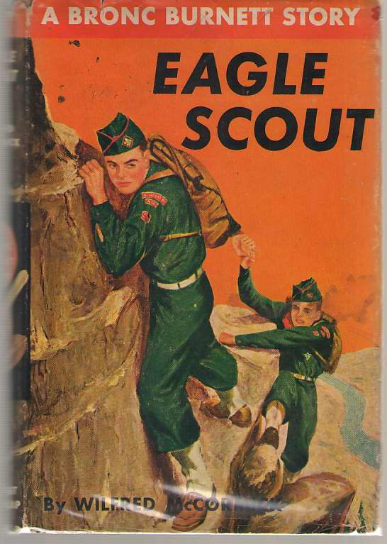 Image for Eagle Scout