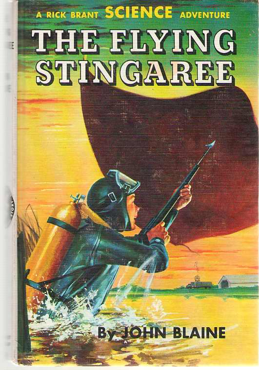 Image for The Flying Stingaree