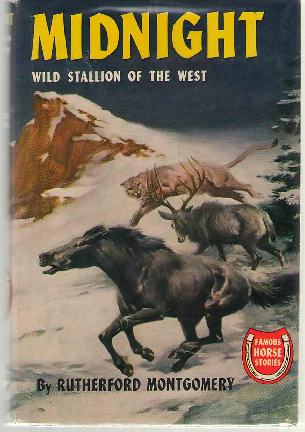 Image for Midnight Wild Stallion of the West