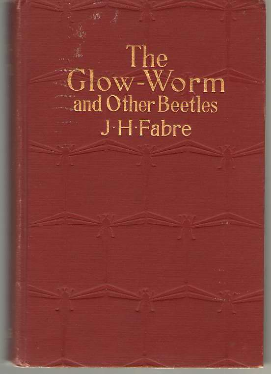 Image for The Glow-worm And Other Beetles