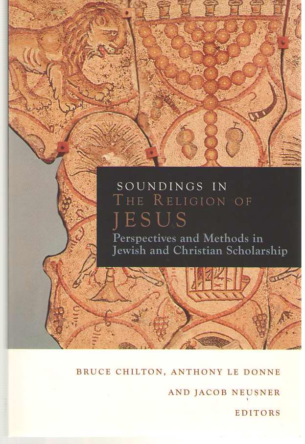 Image for Soundings in the Religion of Jesus Perspectives and Methods in Jewish and Christian Scholarship