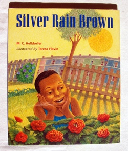 Image for Silver Rain Brown