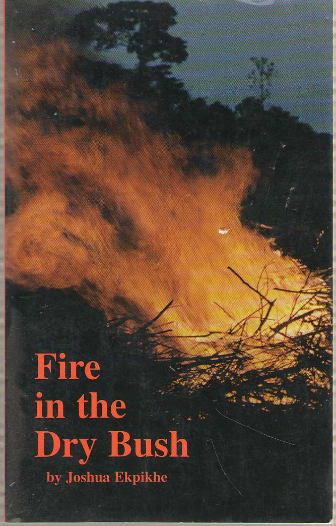 Image for Fire In The Dry Bush